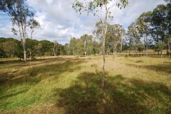 Alphadale Vacant land